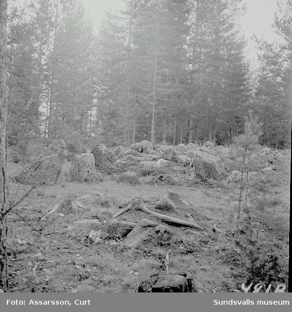 Starkotters grav i Vattjom.