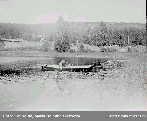 Kvinna i båt plockar näckrosor.