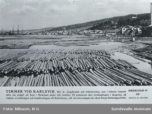 Timmer vid Karlsvik
