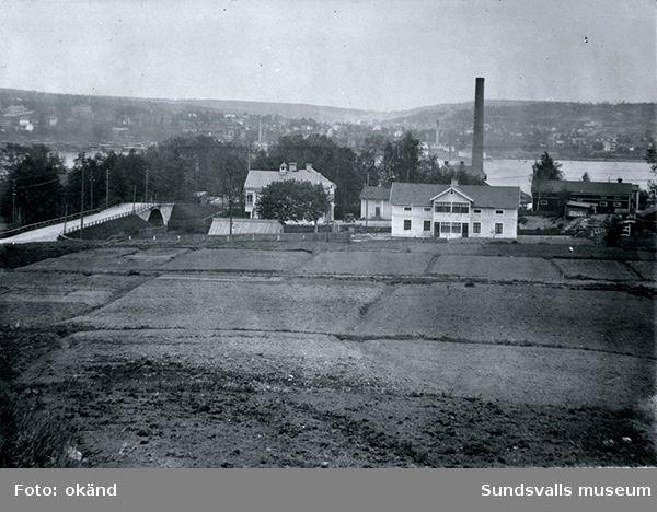 Odlingslotter framför Mons herrgård 1929. Herrgården liiger bakom träddungen till vänster.