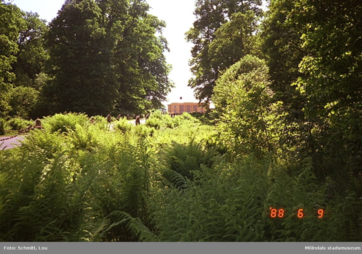 Grönska i förgrunden med Gunnebo slott i bakgrunden.