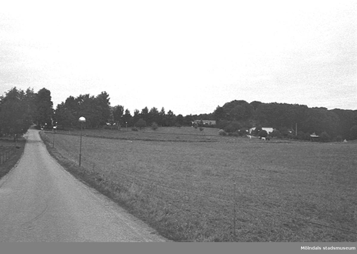 En väg i landskapet, troligtvis i Lindome. Okänt årtal.