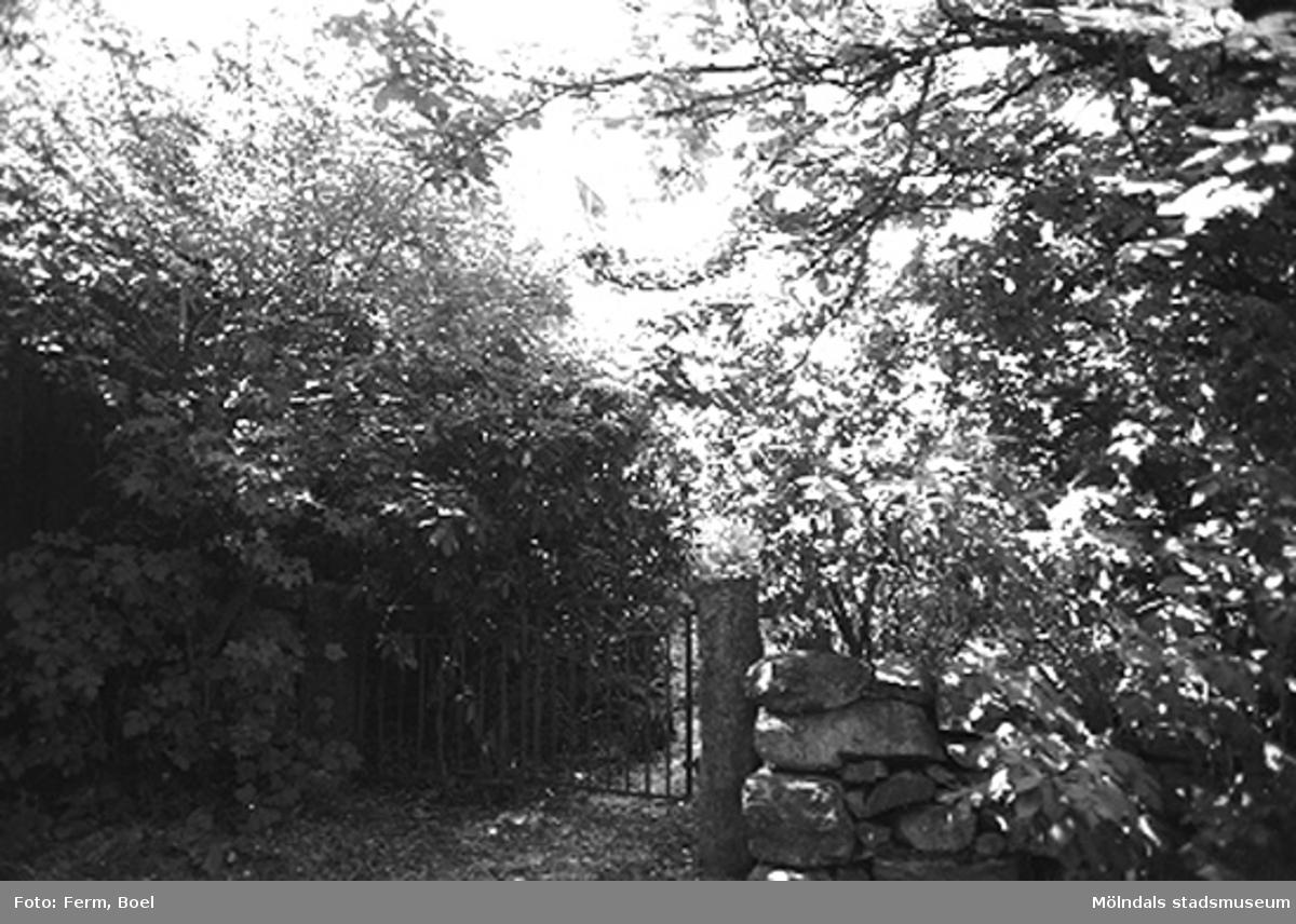 En grind.Högen 2:1/2:2 i Kållered, 1992-06-30.