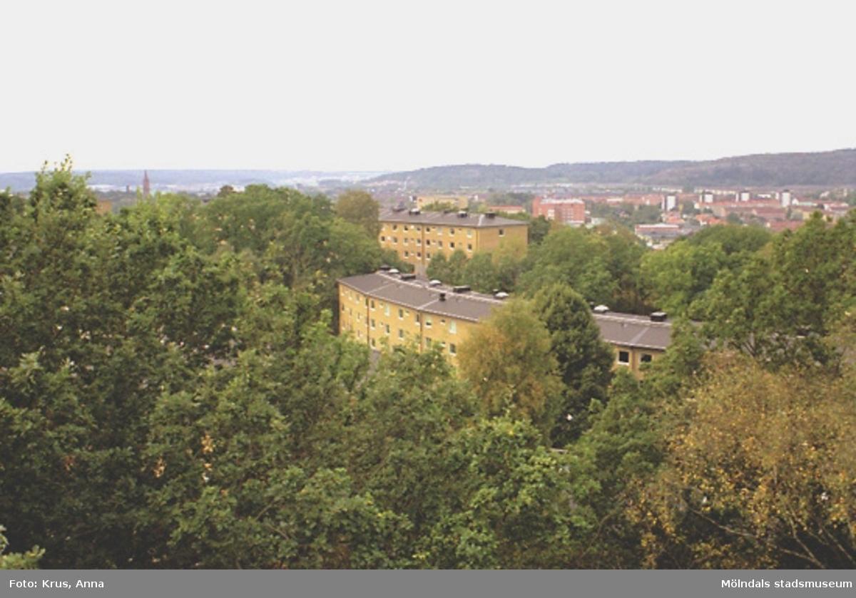 Västra Enerbacken - Översikt från nordost.