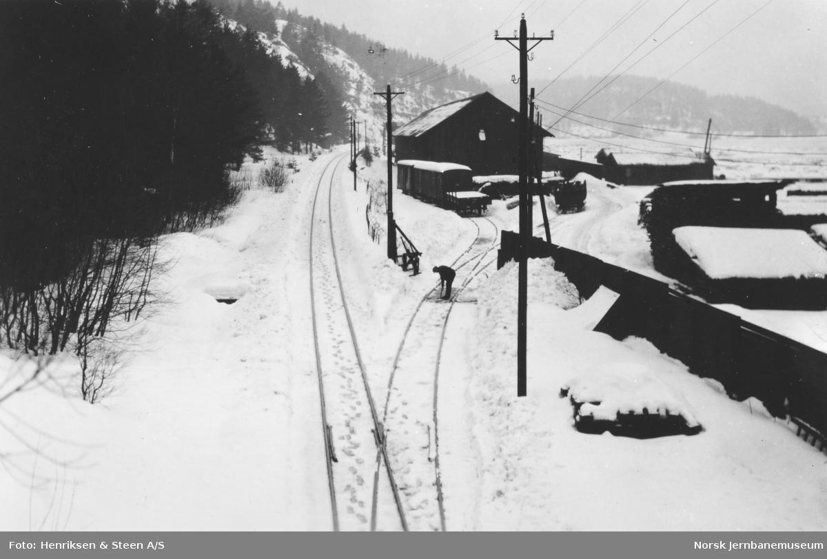Pressebefaring på Vestfoldbanen : sidespor ved Farris