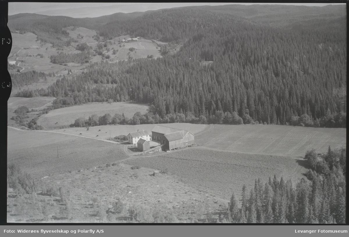 Fjellanger/Widerøes flyfoto. Landskap, åker, bygninger. Skog.