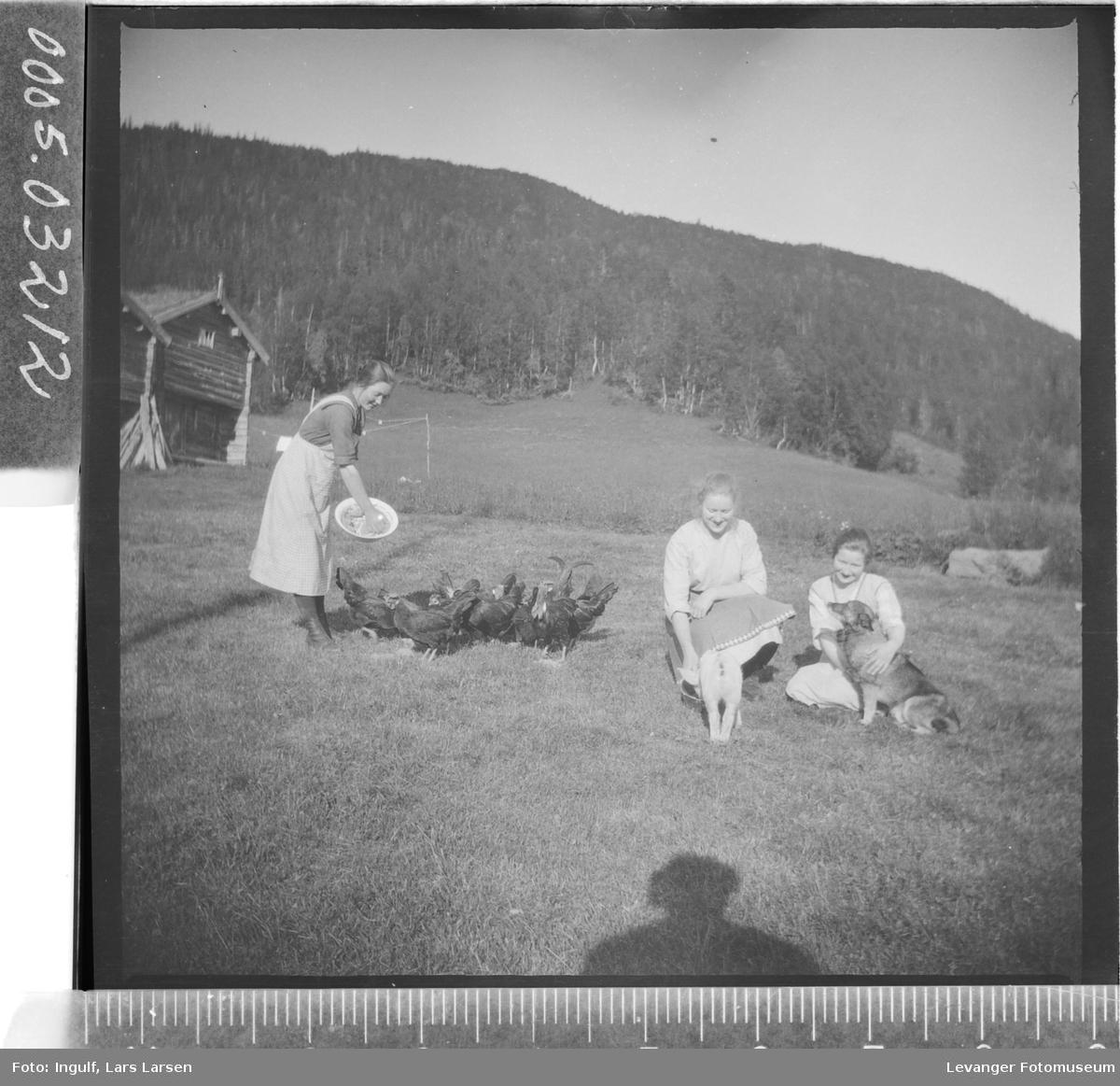 Gruppebilde av tre kvinner med husdyr.