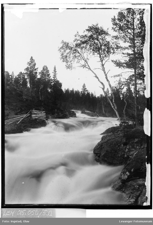 Natur og miljø i Kopperå IX