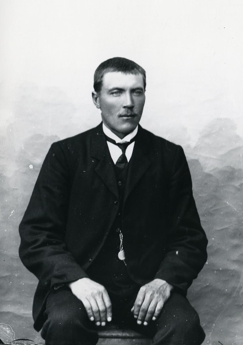 Dresskledd mann i halvfigur, sittende, lerretbakgrunn