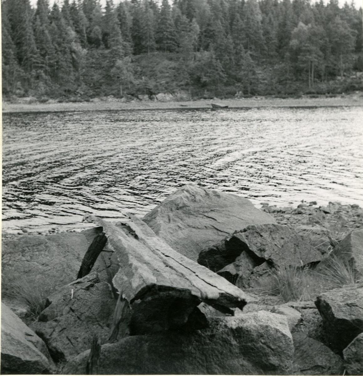 Dalskog, Stora Örlevattensjön