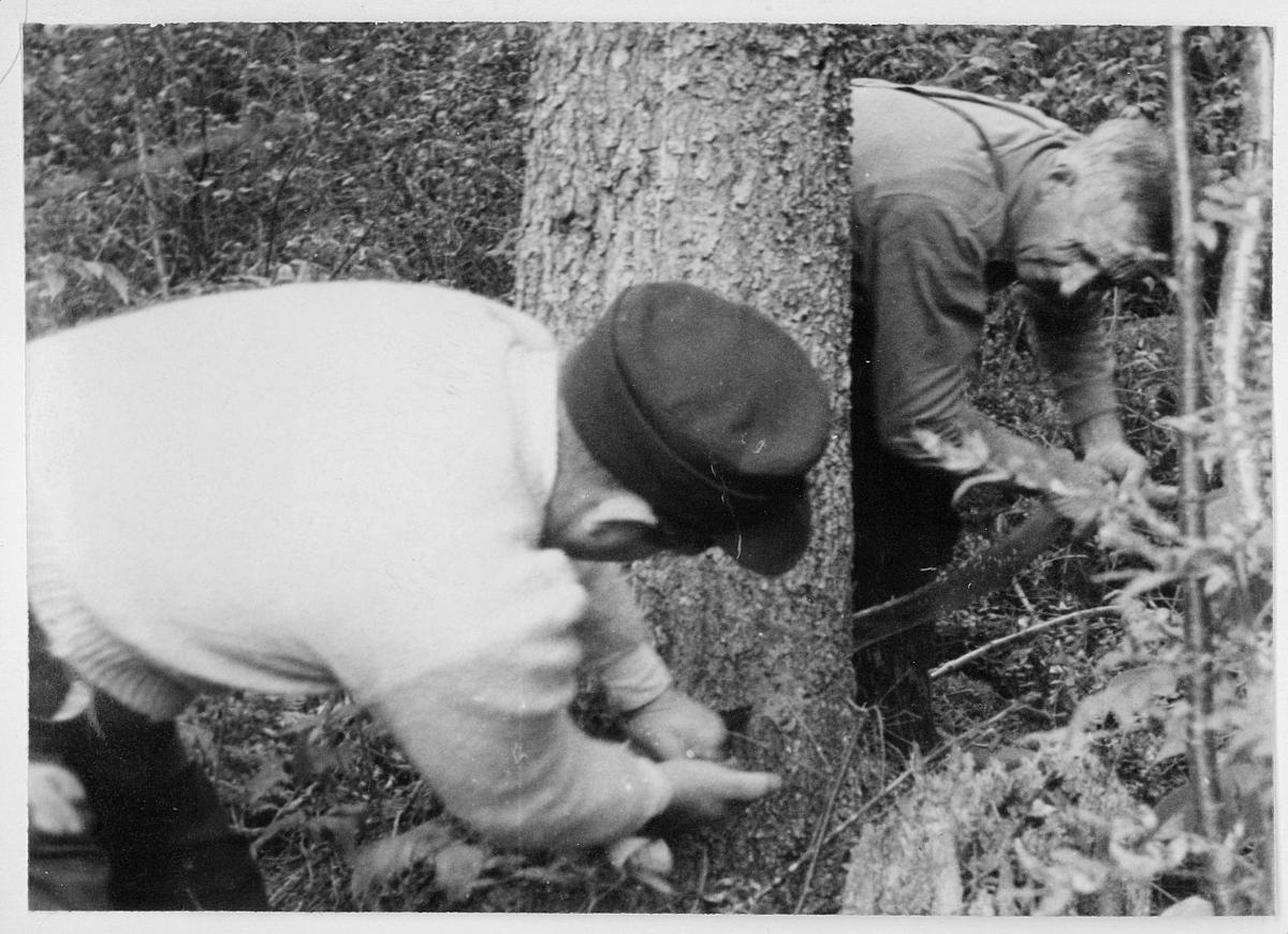 Frimerketrykning, Emil Moestue A/S, trevirke til papir, 2 menn, eksteriør