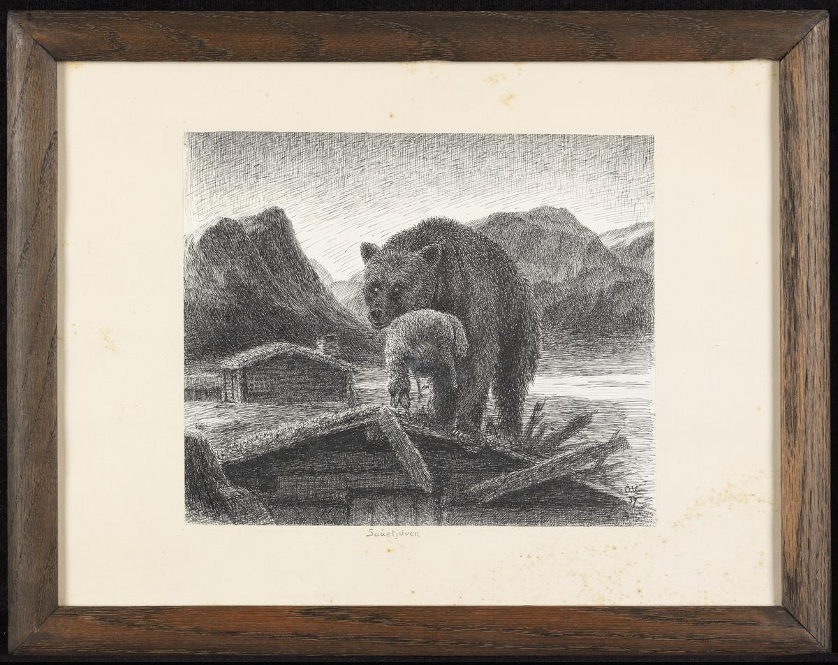 På taket av tømmerstue bjørn m. sau i klørne, fjell-landskap.