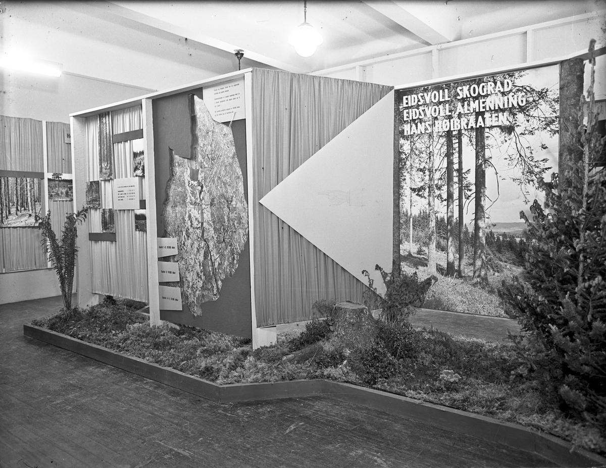 Fra Eidsvoll Bygdeutstilling i 1955.  Stand om Eidsvoll Skogråd, Eidsvoll Almenning og Hans Høibraaten.