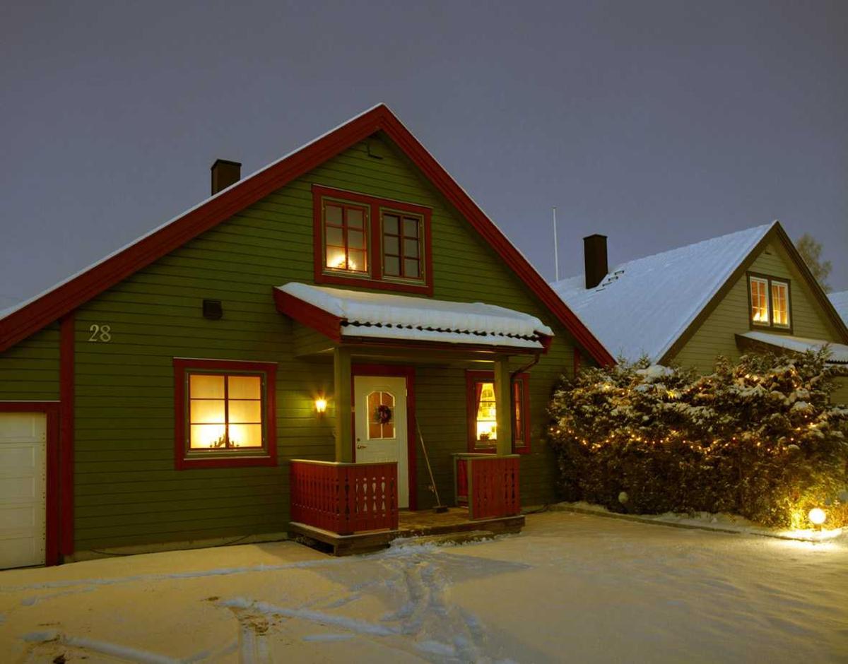 Julebelysning  Hvit julebelysning på furuhekk i hage ved rekkehus