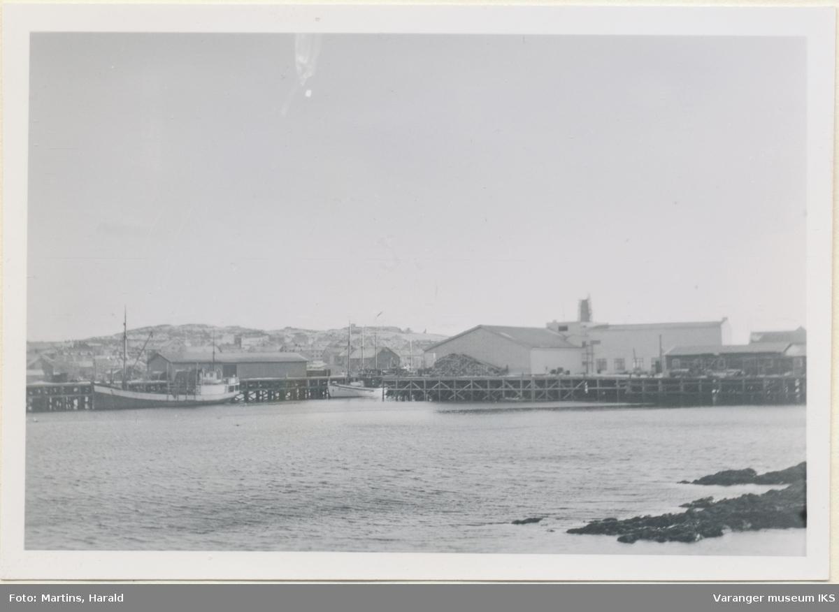Dampskipskaia, Vega og Finotro, oktober 1956