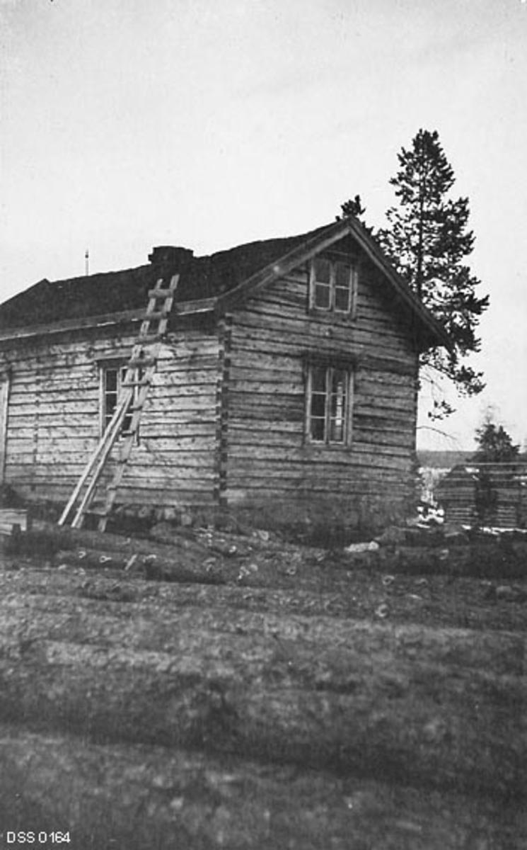 Våningshuset på Skogly i Pasvikdalen (Sør-Varanger i Finnmark), fotografert i 1913.  Bildet viser ei forholdsvis smal stue på en bakkekam mot et vassdrag.  Den var oppført i sinklaftteknikk uten ytterkledning og hadde seinempirevinduer.  Bygningen hadde «kjøkkenstue» og kammers i underetasjen, samt to kvistværelser som i hvert fall kunne brukes sommerstid.  I bakgrunnen til høyre skimter vi et stabbur som øyensynlig ikke var helt ferdigbygd.  Funksjonærboligene Skogly og Nesheim ble bygd ved Vagatem i Pasvikdalen i 1902-03.  Dette ble gjort som et spleiselag mellom «Skogvæsenet» (den statlige skogetaten) og «Justisvæsenet», fordi funksjonærene som skulle bo her både skulle være skogvoktere og grensepoliti.  I første omgang ble det bygd våningshus og uthus - fjøs, stall og høyløe - med sikte på at beboerne skulle ha et husdyrhold som gav kjøtt, mjølk og transporttjenester.  Oppdyrkinga gikk det langsomt med i starten, for jordvegen besto i stor utstrekning av mosemyr.  I 1909 brant Nesheim.  På grunn av dårlig jordveg ble denne skogvokterboligen gjenoppført på et annet sted i løpet av de følgende par åra.  Samtidig bygde Øst-Finnmark skogforvaltning også en skogvoktergard på et sted som ble kalt Mennika i Pasvikdalen.  I 1913 ble det bevilget penger til utvidelse og modernisering av bebyggelsen på Skogly.  Dette fotografiet er antakelig tatt i forkant av dette byggeprosjektet.