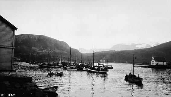 fiskerflåte, båt, fjordlandskap, havn