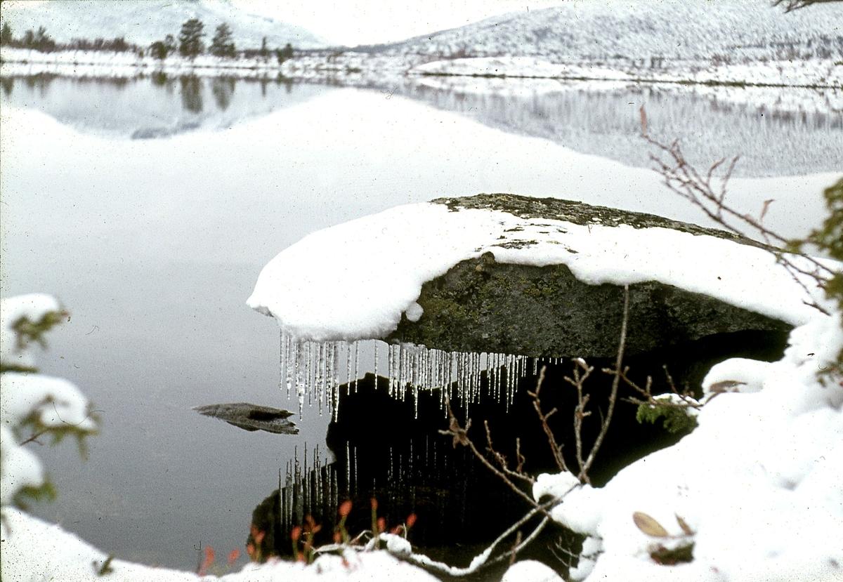 Store Vonsjø