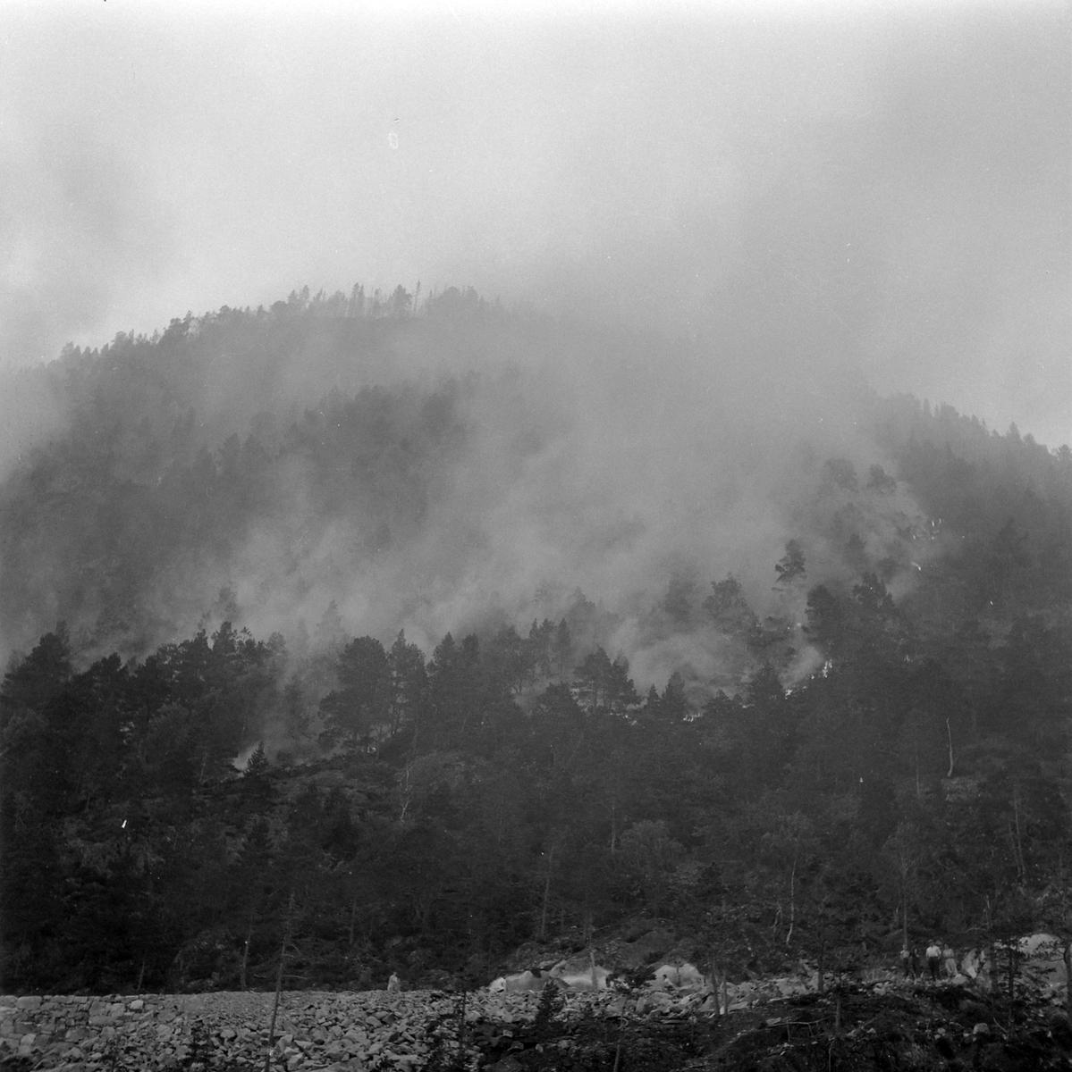Skogbrann i Leksvik sett fra marinebåten Troll ute på fjorden.