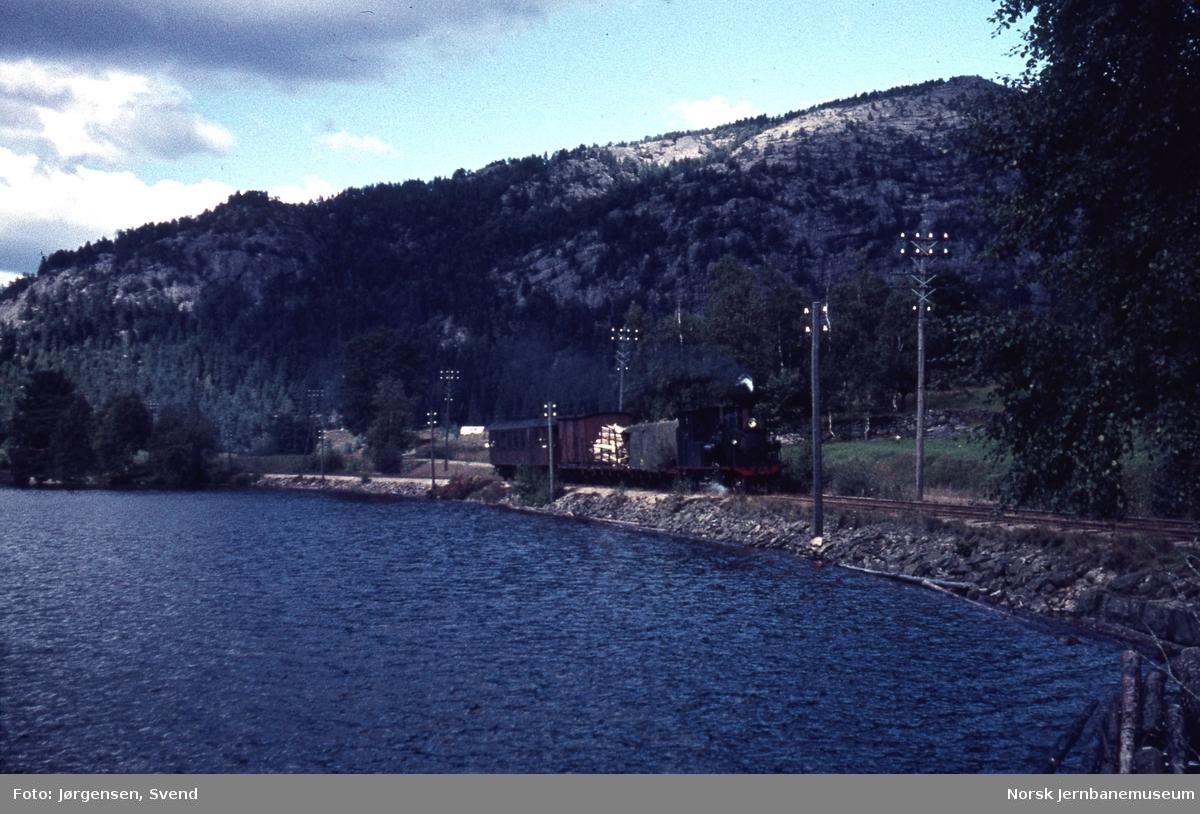Godstog 5662, trukket av damplokomotiv nr. 5, ved Vassenden sør for Byglandsfjord
