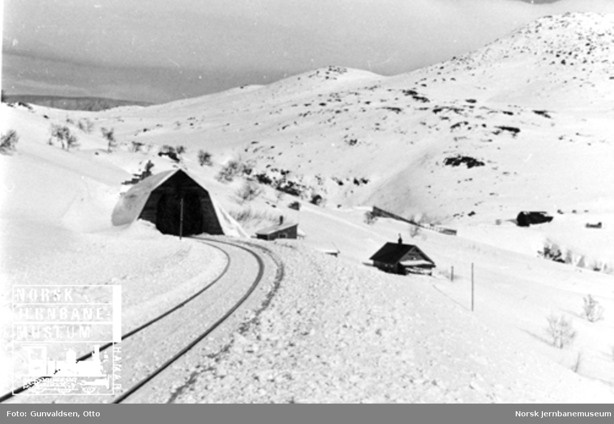 Linjeføringen mot snøoverbygg ved Vika vokterbolig