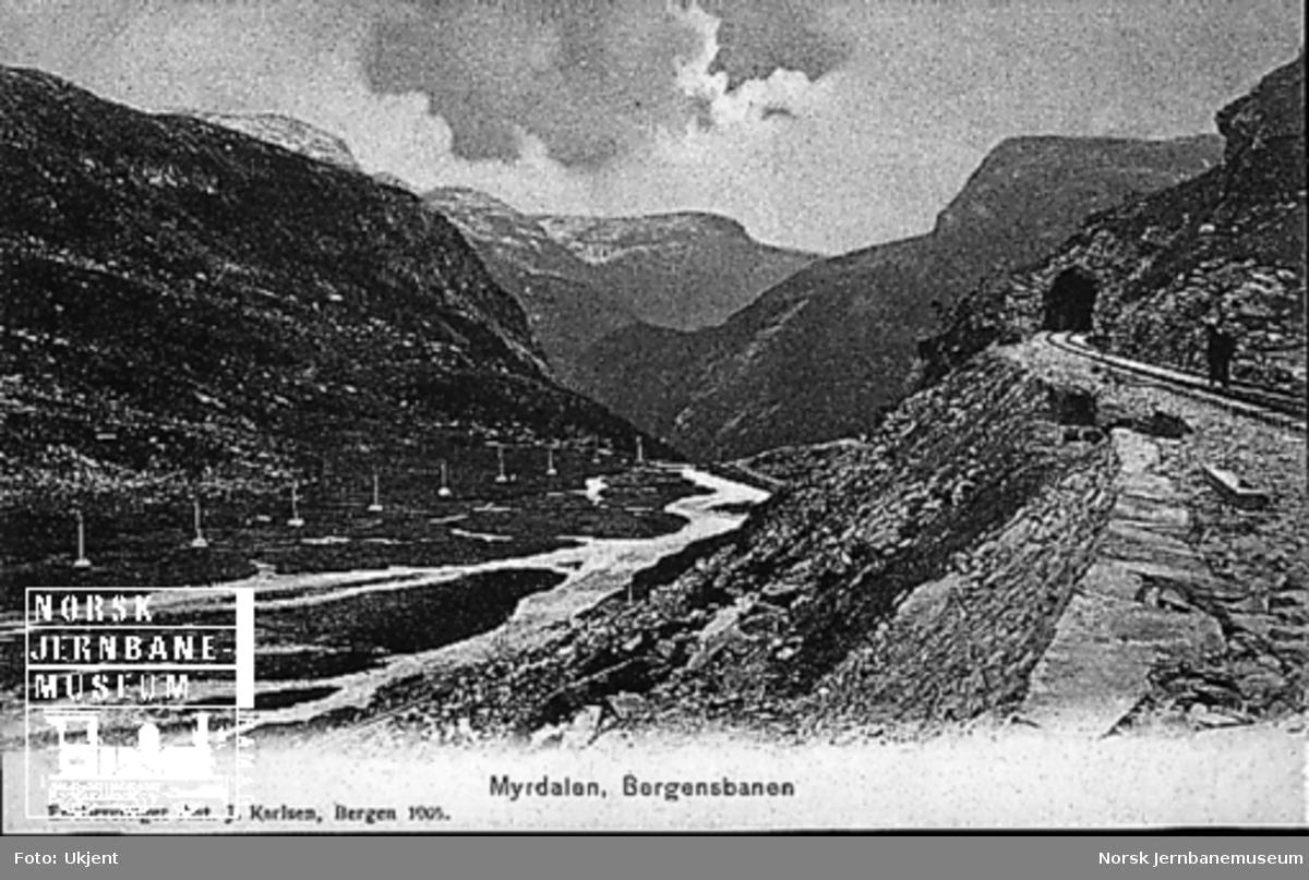 Parti fra jernbanelinjen ved Myrdal med utsikt mot Flåmsdalen