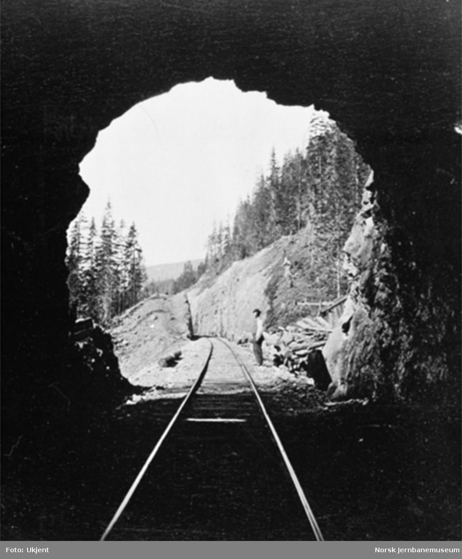 En av tunnelene i Drøiliene; sett utover fra tunnelåpningen
