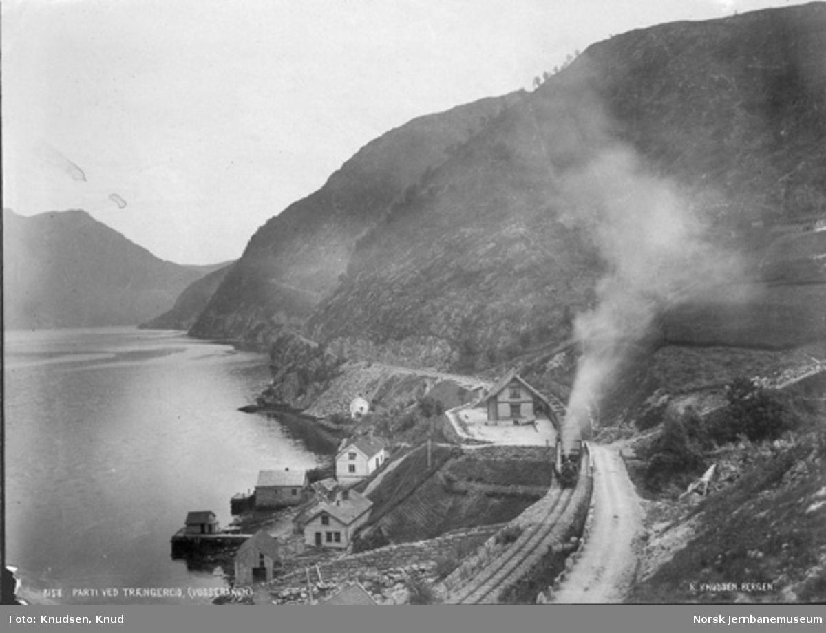 Oversiktsbilde fra Trengereid med stasjonen, hvor det står et damplokomotiv med persontog