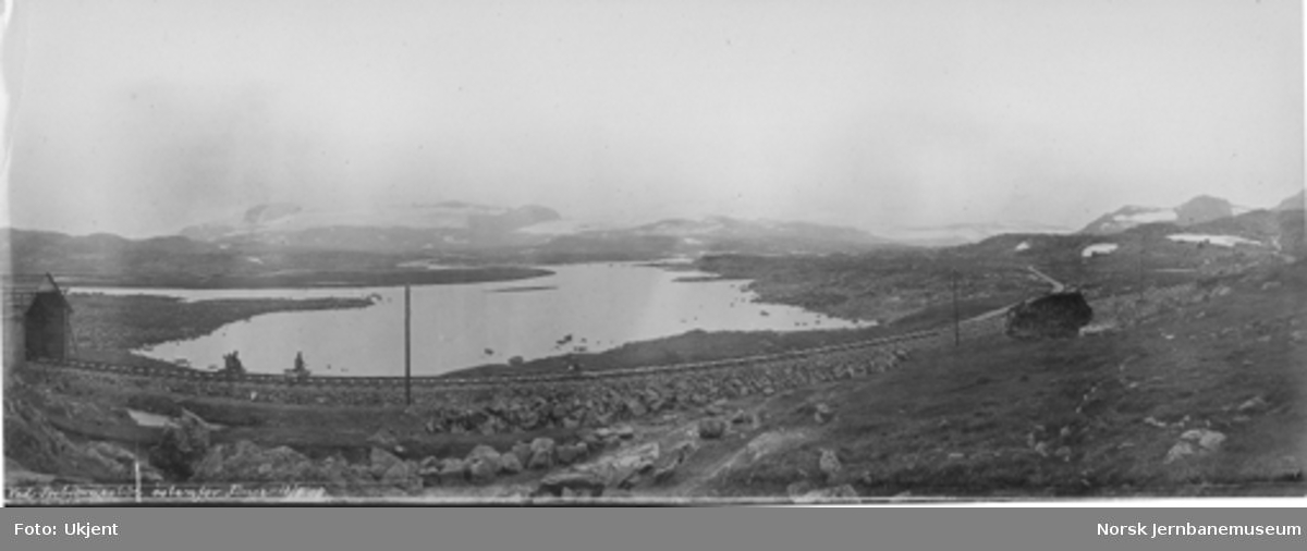 Linjen ved Torbjørnstøl øst for Finse