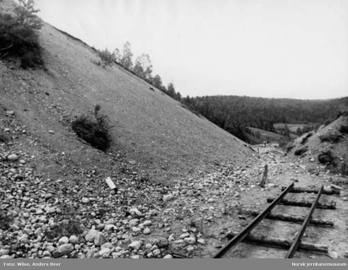 Nordlandsbaneanlegget : skjæring ved Tømmerdal