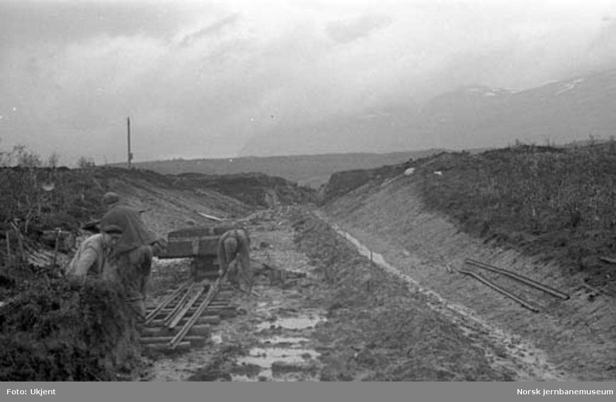 Nordlandsbaneanlegget : skjæring mot Strømsnes