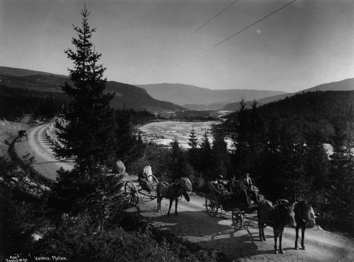 Kalesjevogn og karjol, på veien like sør for Ryfoss, Vang, Oppland,  1880-90-årene. Kalesjevognen har trykkfjærer, karjolen er uten fjærer. Vognen er sannsynligvis Statens diligence.